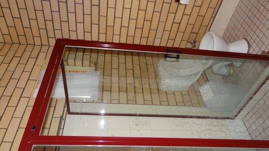 The Country Manor Motor Inn: Bathroom