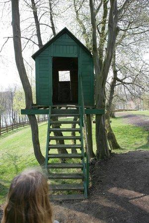 Kania Lodge: tree house