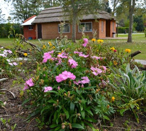 Hosteria de Campo Santa Maria : Quincho y Flores