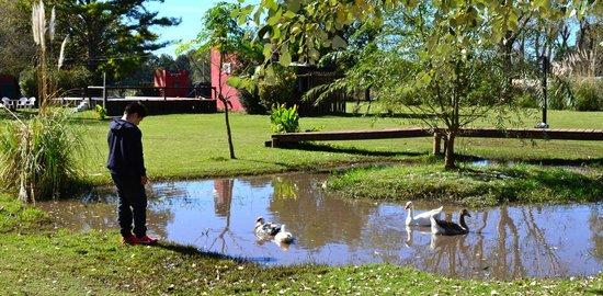 Hosteria de Campo Santa Maria : Lagunita...