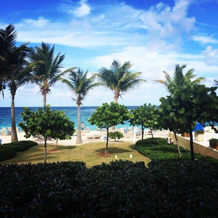 The Westin Dawn Beach Resort & Spa, St. Maarten: View from first floor corner room