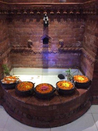Hotel Nepalaya: nepalaya
