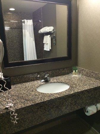 Holiday Inn Ontario Airport: bathroom