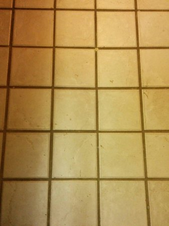 Inns Of Banff: Dirty bathroom floor