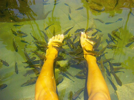 Sanya Zhujiang Nantian Spa: Рыбий массаж 1-го уровня
