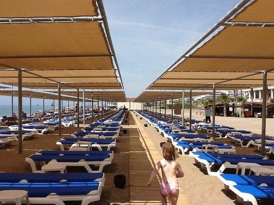 TUI BLUE Palm Garden : Plage privée de l'hôtel