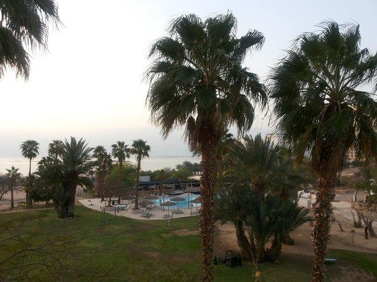 Leonardo Inn Hotel Dead Sea: Вид из окна номера 232