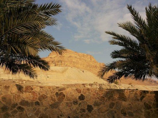 Leonardo Inn Hotel Dead Sea: На эту гору можно сходить по проложенному маршруту :))