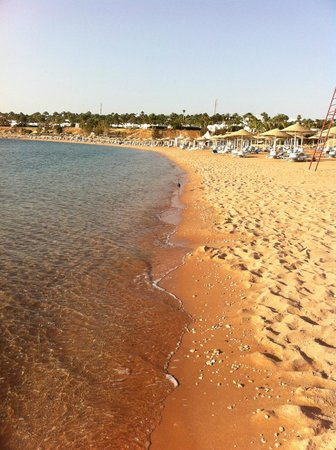 Domina Hotel & Resort Harem: Пляж