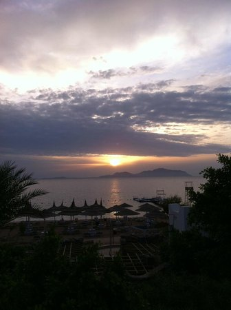 Domina Hotel & Resort Harem: Вид с номера