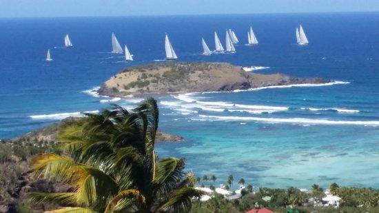 Au Coeur Caraibe: le lagon et les voiliers