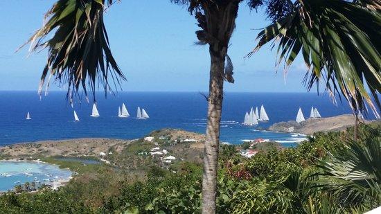 Au Coeur Caraibe: la vue