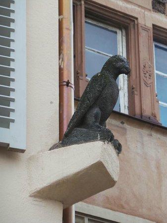 Hôtel Cour du Corbeau Strasbourg - MGallery Collection : Le fameux corbeau