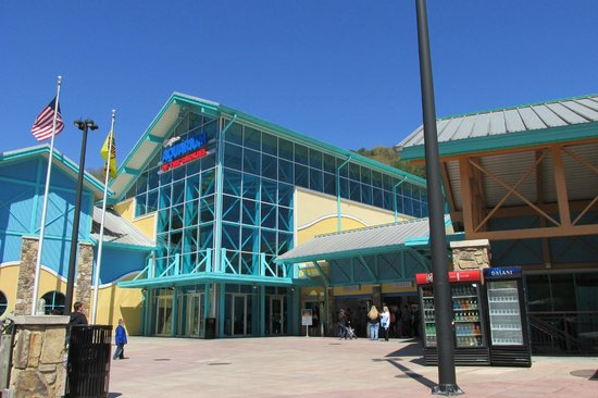 Ripley's Aquarium of the Smokies : Front of Aquarium
