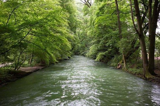 Jardín inglés: Eisbach River