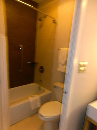Doubletree Hotel Metropolitan - New York City: bathroom with tiny bath but powerfull shower.