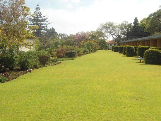 Quinta da Casa Branca : Garten mit Terrassen der Zimmer