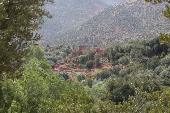 Domaine de la Roseraie : A Berber village from the hotel grounds