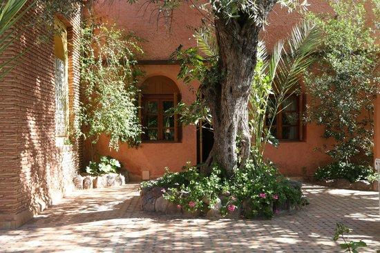 Domaine de la Roseraie: Our own patio and room