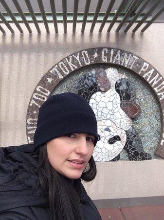 Ueno Zoo: Lo recomiendo hermoso lugar