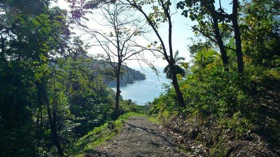 Mango Moon Villa : Walk to beach