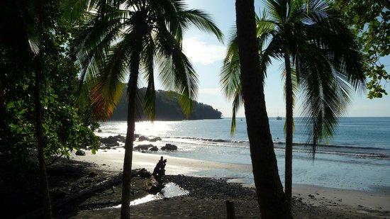 Mango Moon Villa : Semi-private beach