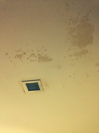 Grand Hotel Scarborough: Damp in the room
