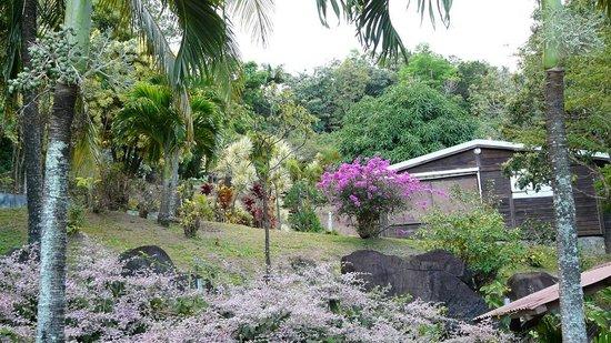 Guest House Kotesi : Un autre coin du jardin