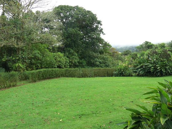 Poas Volcano Lodge: Aussicht