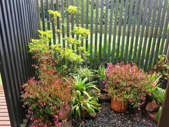 Poas Volcano Lodge: Garten