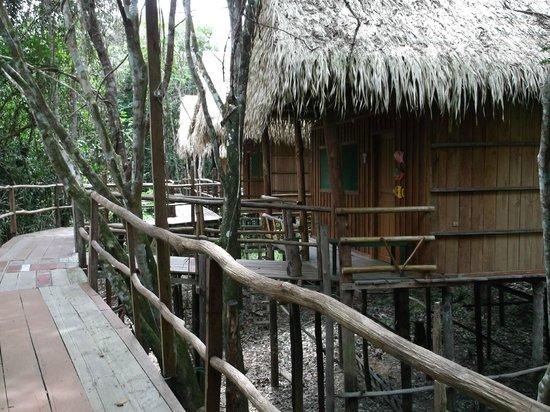 Tariri Amazon Lodge : our lodge