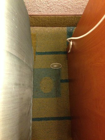 La Quinta Inn & Suites Flagstaff: the carpet  looked like it never seen a vacuum in months, with previous guest trash laying there