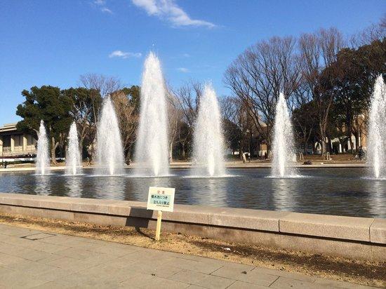 Ueno Park: La fuente frente a los museos