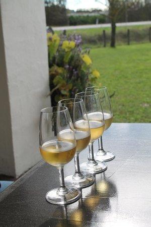 Wrights Vineyard & Winery : vertical tasting flight