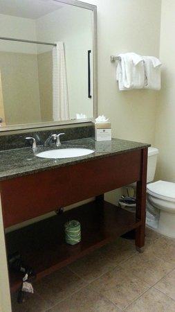 BEST WESTERN PLUS Philadelphia Airport South at Widener University: Bathroom/vanity area