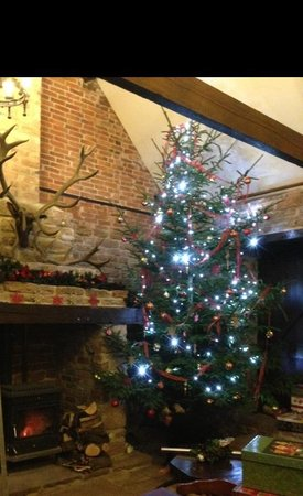 Beauvale Priory Tearooms: Christmas tree & roaring fire, very cosy