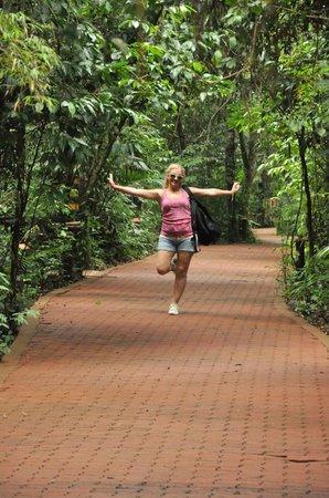 La Aldea de la Selva Lodge : Senderos