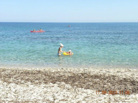 Aldemar Cretan Village: водоросли