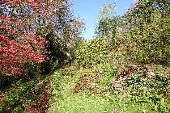 Heddon's Gate Hotel: Gardens