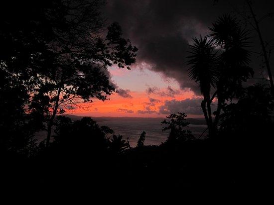 Ceiba Tree Lodge: Sundown