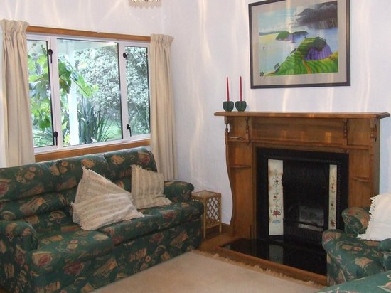 Stargazers Bed & Breakfast: Relaxing area with fire and TV