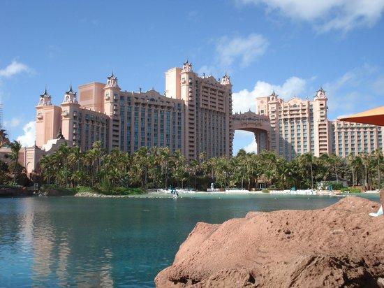 Atlantis, Royal Towers, Autograph Collection: Вид с территории отеля