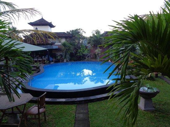 Sugars Villas: heerlijk zwembad!