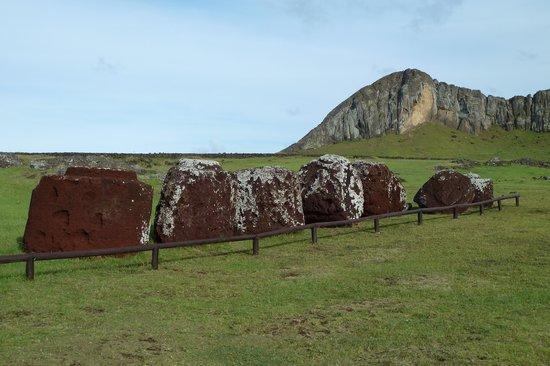 Ahu Tongariki: Hüte, die keinem Moai mehr passen