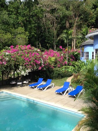 The Blue House Boutique Bed & Breakfast: Pool