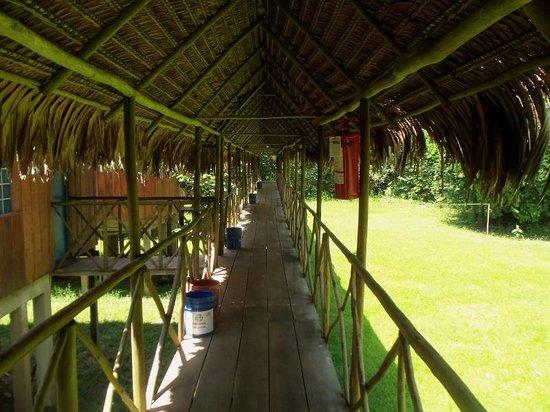 Muyuna Amazon Lodge : muyuna lodge