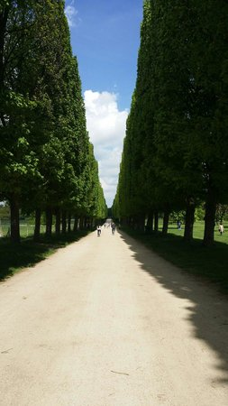 Fat Tire Tours Paris: Biking through versailles