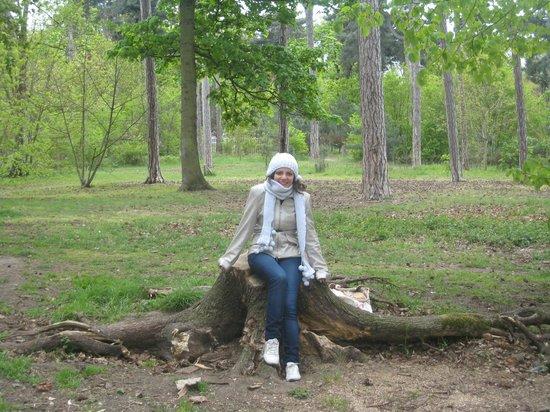 Jardin dAcclimatation bois de boulogne ~ Jardin D Acclimatation Bois De Boulogne