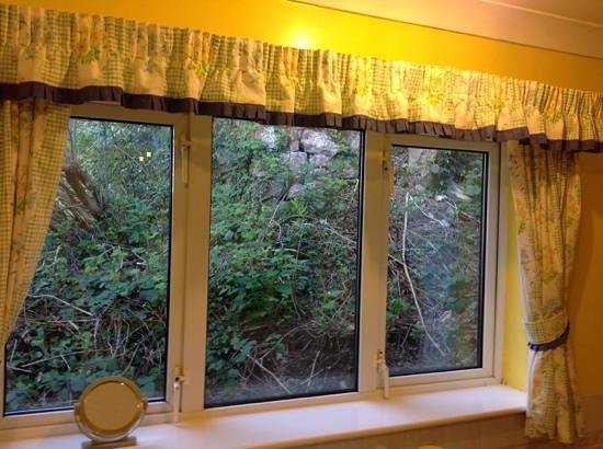 Forest View Guest House: View from kitchen window!