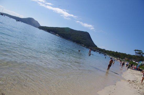 Mantra Aqua: Shoal Bay beach, simply gorgeous
